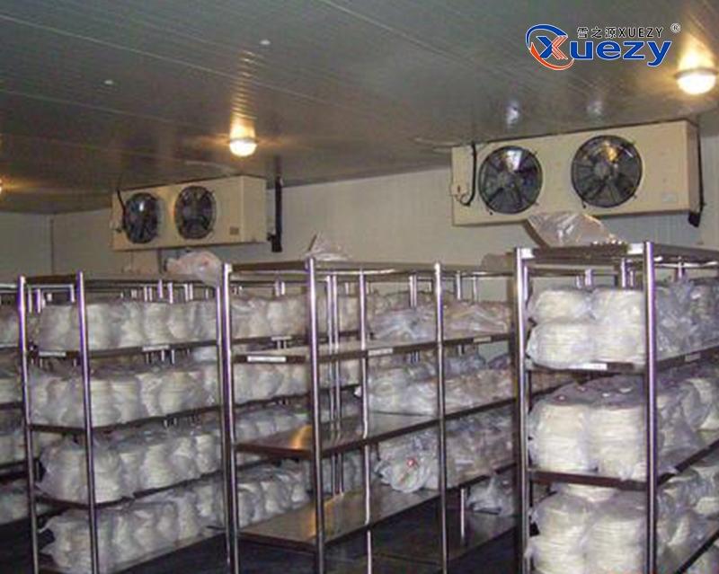 铝排速冻冷库