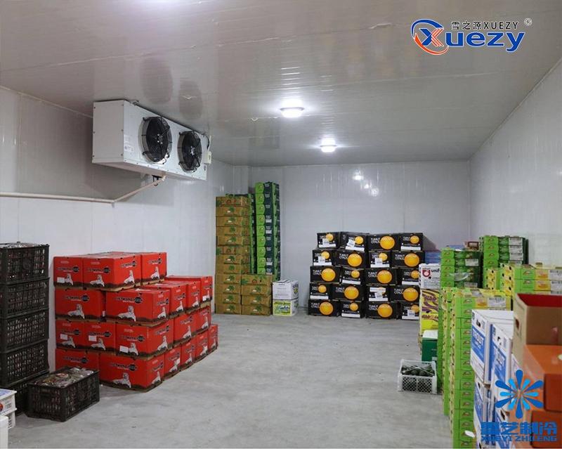 荆州水果冷库