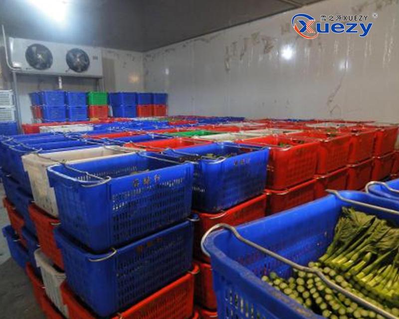 荆州蔬菜冷库